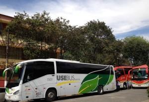 Três ônibus levaram cerca de 50 alunos para o Anima Mundi