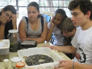Visita dos alunos da EMEF Desembargador Amorim Lima na Estação Ciência, em São Paulo