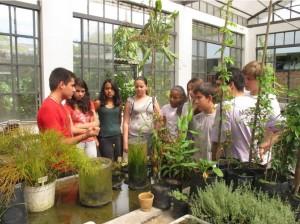 Alunos do Amorim Lima aprendem sobre o cultivo de plantas na Estação Ciência